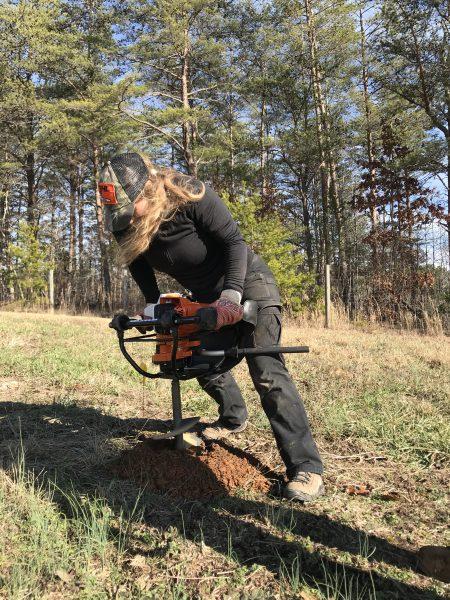 Cheyenne Adamonis augering an eastern hemlock hole at Chilhowee, TN